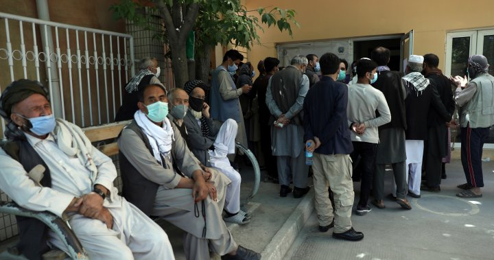 Afghanistan COVID-19 cases rise 2,400% as virus spirals out of control