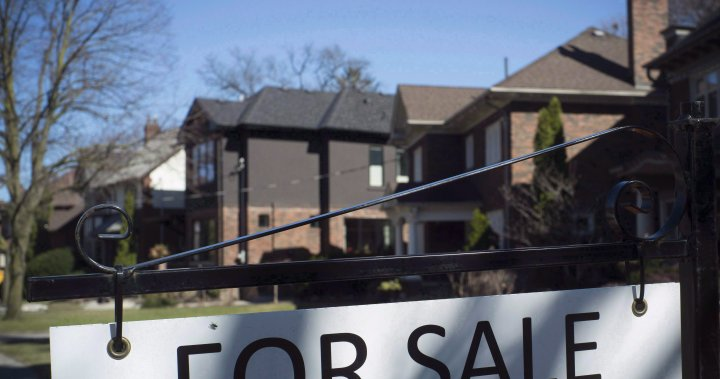 Canada's housing market unlikely to cool as new home buyers opt for variable loans - National