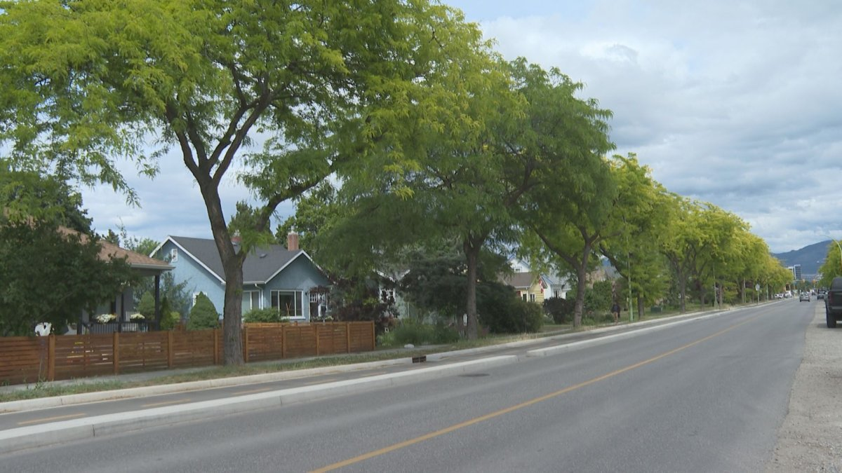 The city is asking residents and homeowners to help care for young trees planted on streets and boulevards near where they live.