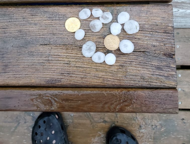 Hail the size of loonies from Thursday night's storm in Winnipeg Beach.