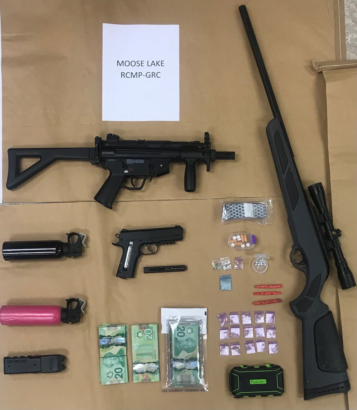 Multiple drugs and pellet guns were seized in Moose Lake.