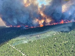 Continue reading: Wildfire-plagued B.C. region formally calls for provincial state of emergency