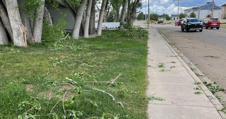 Severe storm, tornado damage areas south of Calgary – Calgary