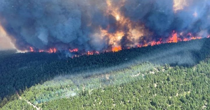 B.C. wildfire map 2021: Location and size of the fires burning around the province