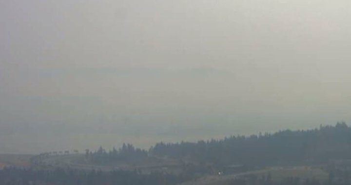 As temperatures rise in B.C.s Southern Interior, health agency issues heat reminder, safety tips - Global News