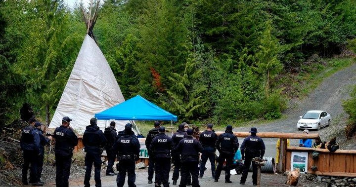 16 more arrested at Fairy Creek anti-logging protests