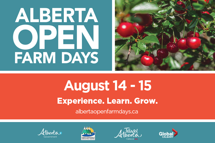 Alberta Open Farm Days, supported by Global Calgary - image