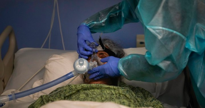 U.S. life expectancy fell by 1.5 years in 2020, largely thanks to COVID-19: CDC – National | Globalnews.ca