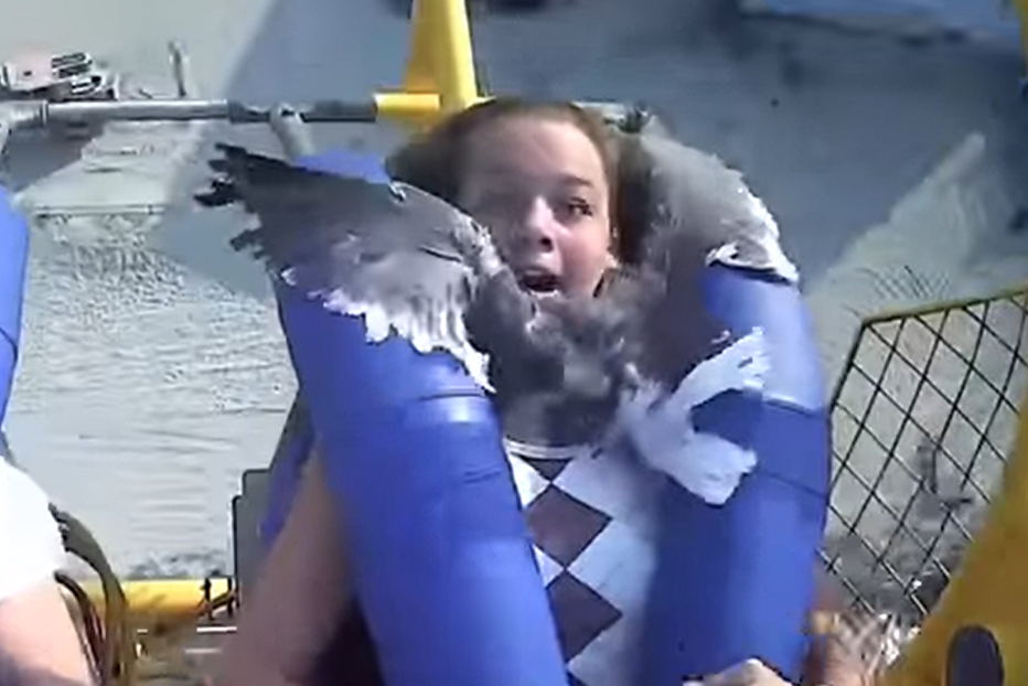 Kiley Holman reacts to a seagull striking her on a ride at the Morey's Piers amusement park in Wildwood, N.J., in this image from video on July 6, 2021.