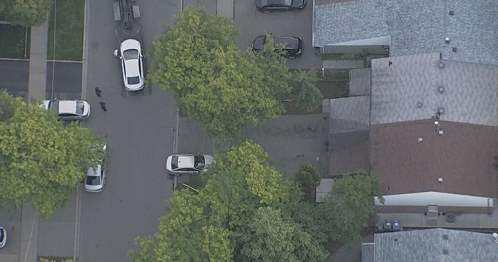 1-year-old girl dies after being hit by vehicle in Brampton driveway – Toronto