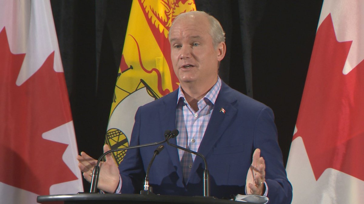 New Brunswick getting plenty of attention from Ottawa as rumoured federal election looms - image