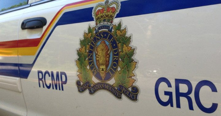 Woman dead after bear mauling in northern Alberta: RCMP