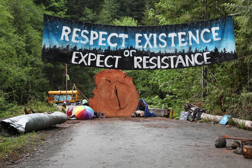 Protesters sit chained to a tree stump at an anti-old-growth logging blockade in Caycuse, B.C. on Tuesday, May 18, 2021. In the year since the first camp was set up to prevent old-growth logging on southern Vancouver Island, an expert in Canadian environmental movements says the protests have made a mark on provincial politics and public discourse. THE CANADIAN PRESS/Jen Osborne.