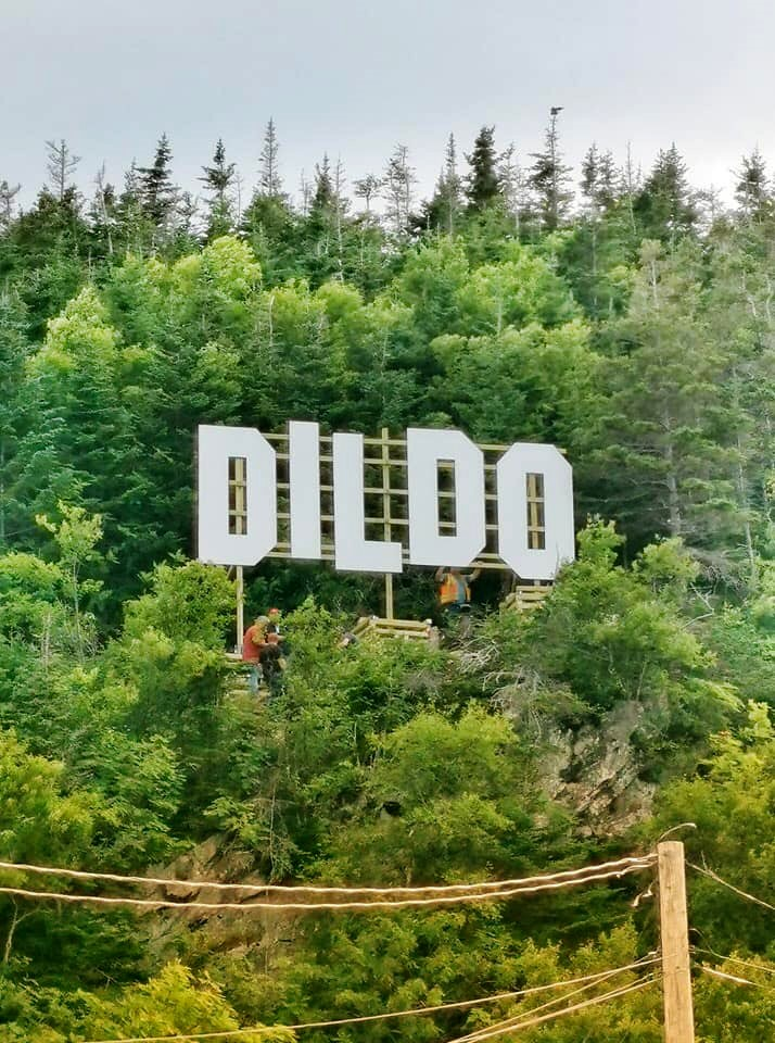 A Hollywood-like sign can be seen over the town of Dildo, Newfoundland in Canada in this undated handout photo provided August 19, 2019.