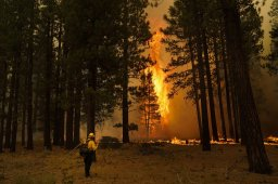 Continue reading: Thousands flee as winds push California wildfire dangerously close to Lake Tahoe