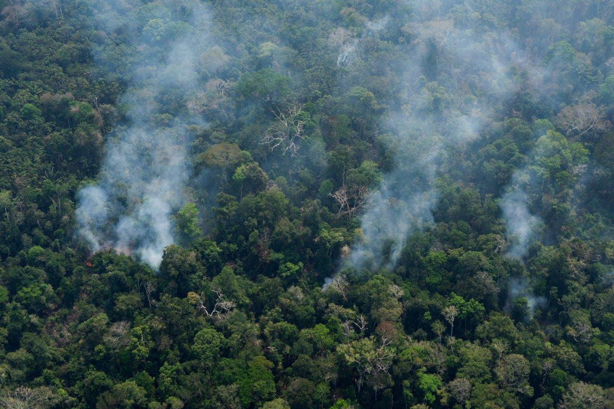 Small columns of smoke rise from the forest near Porto Velho, Brazil, Friday, Aug. 23, 2019.