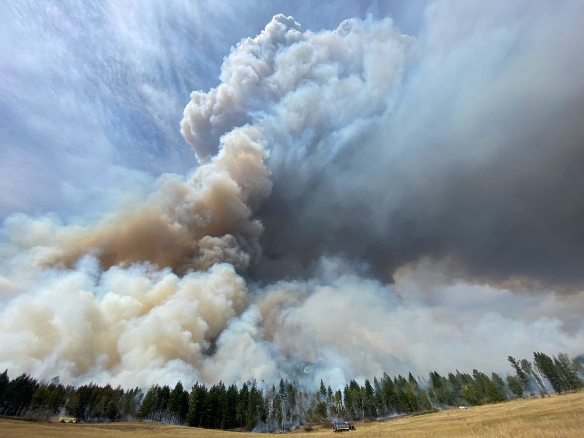Smoke rises from a massive planned burn at the White Rock Lake wildfire on Monday, Aug. 30, 2021.