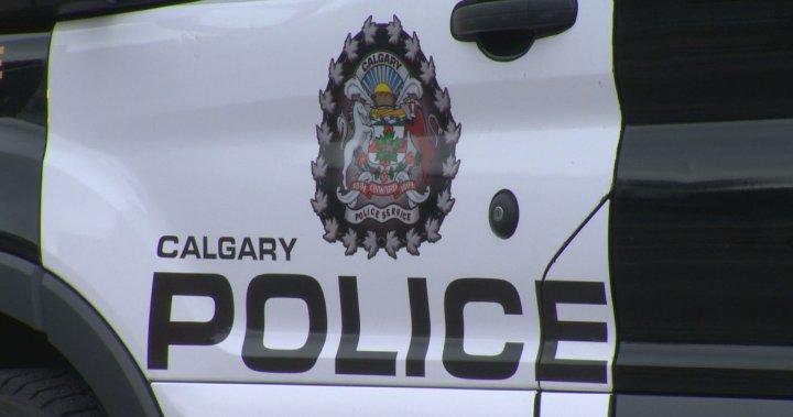 Calgary Police investigating swatting incident in U.S. – Calgary