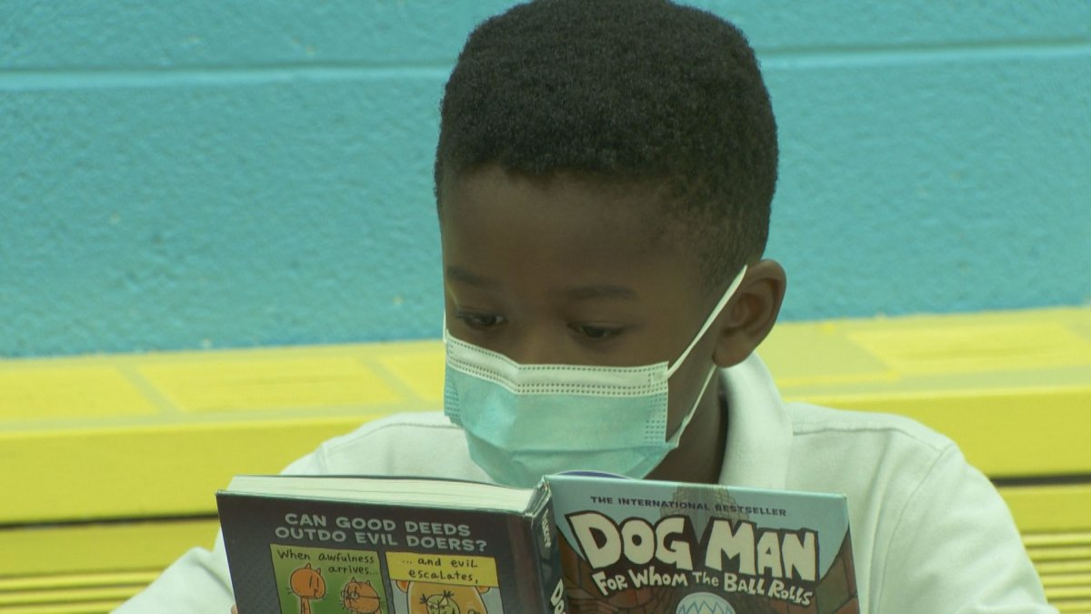 A student at Allion Elementary in LaSalle reads a book at the school library.
