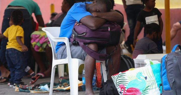 Bitten under pressure when the United States releases some Haitians at the border, deporting others – national