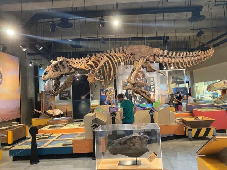 Over 12,200 visitors came through the gates of the T.rex Discovery Centre this past season.