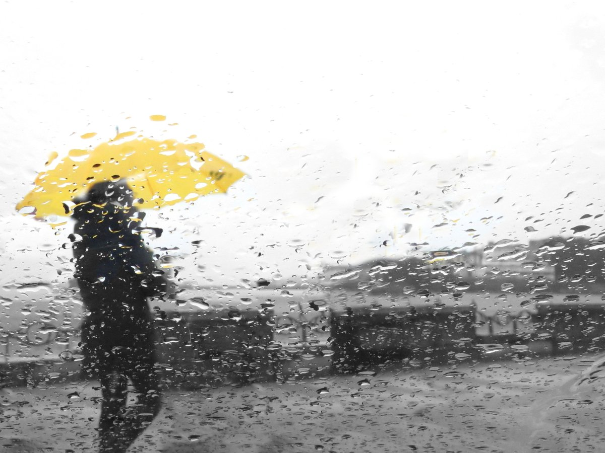 Environment Canada has issued a special weather statement for Waterloo Region, Guelph and southern portions of Wellington County.
