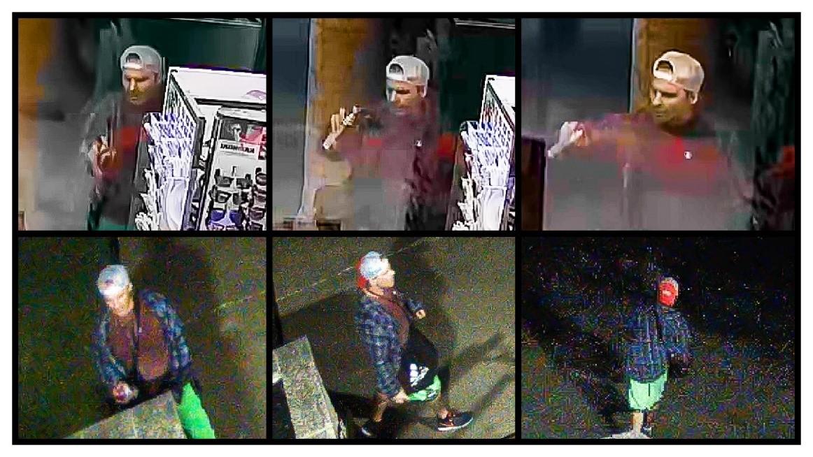 Photos of the vandalism suspect.