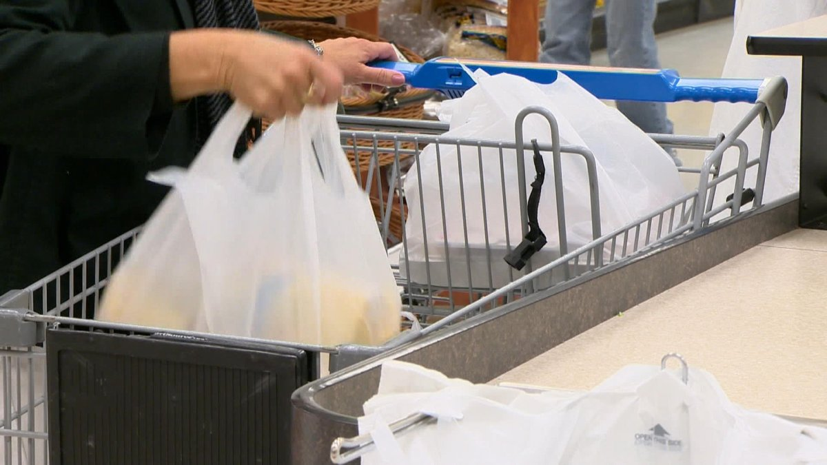 A ban on plastic bags at customer checkout counters will come into effect Feb. 1, 2022 across Regina.