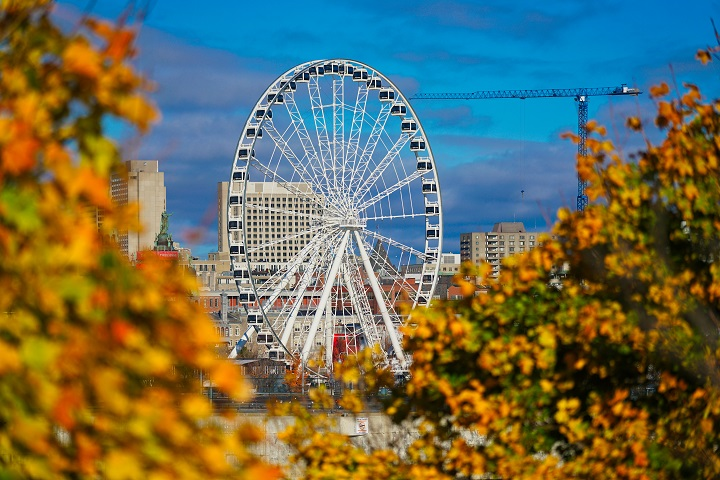 La Grande Roue ferris wheel framed by autumn foilage in Montreal, Que., Tuesday, October 27, 2020.